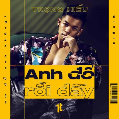 Anh Do Roi Day cover
