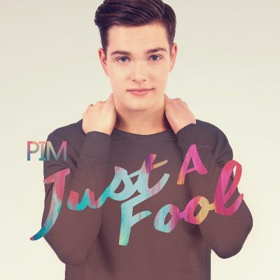 Just A Fool - cover